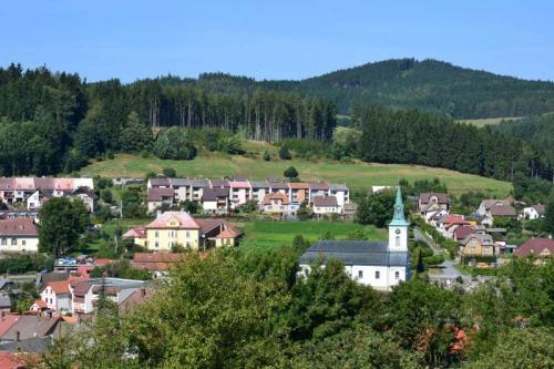 Amitié Franco-Tchèque