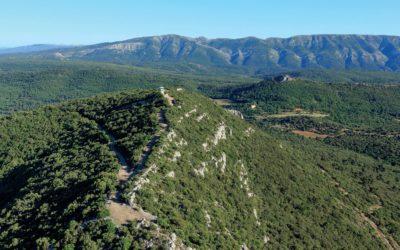 Natura 2000 : un juste équilibre entre environnement et développement